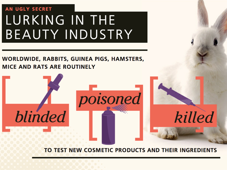 Proposed U S Ban On Animal Testing For Cosmetics Receives