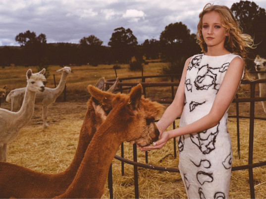 Green Embassy , Australia, alpaca, eco-fashion, sustainable fashion, green fashion, ethical fashion, sustainable style, Zuhal Kuvan-Mills, Global Organic Textile Standard, National Association for Sustainable Agriculture Australia, merino wool