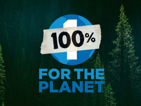 Patagonia, Black Friday, 1 Percent for the Planet, fashion philanthropy, eco-fashion, sustainable fashion, green fashion, ethical fashion, sustainable style
