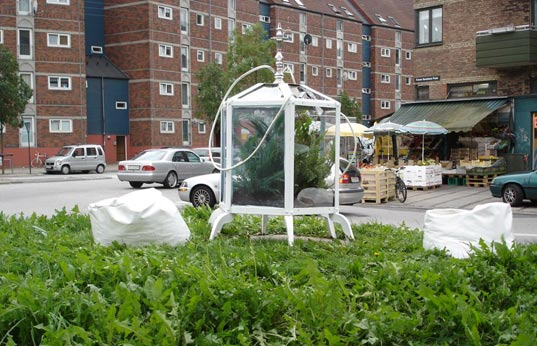 publik, denmark, hot summer, urban farming, oxygen greenhouse, intervention garden